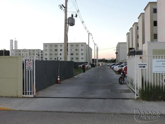 Apartamento à venda com 2 dormitórios em Canudos, Novo hamburgo cod:17050