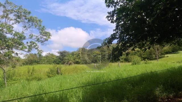 Sítio 20 ha região baú da guia mt - Foto 13