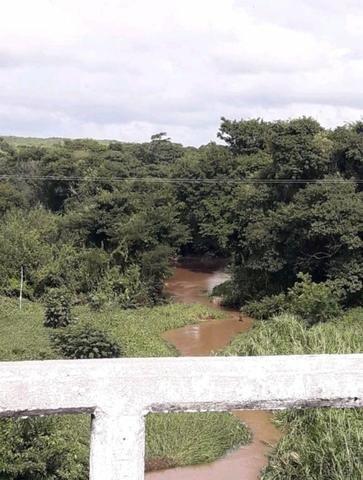 Fazenda em forquilha 130 hectares - Foto 3