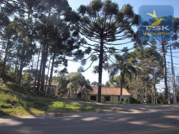 CH0252 - Agudos do Sul Chácara 10.000 m² frente asfalto 2 km da cidade - Foto 3