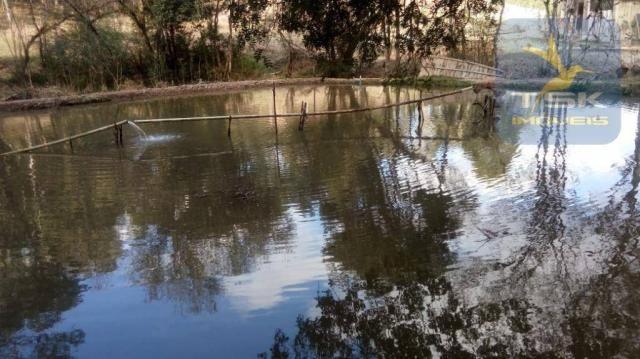 Chácara Rural/Comercial 1.500 m² Mandirituba frente estrada - Foto 8