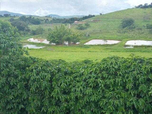 Sítio 20 Alqueires próximo a Pouso Alegre no sul de Minas Gerais  - Foto 16