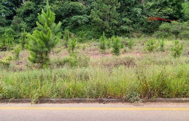 Terreno à venda em Ipiranga, São josé cod:43 - Foto 6