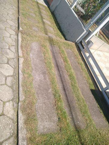Serviços de jardinagem  - Foto 3