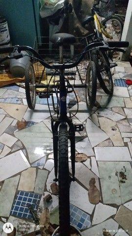 Ticiclo  - Foto 2