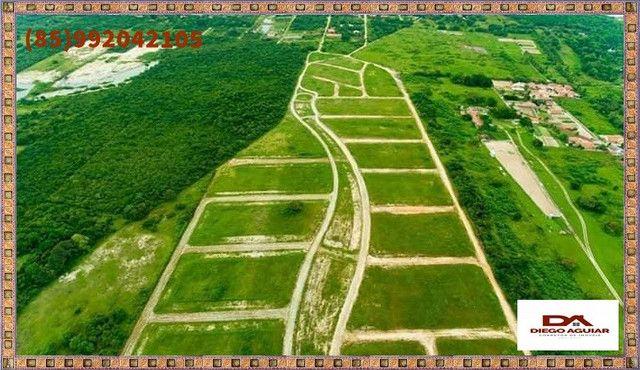 :: lotes no Eusébio >> invista no futuro :: - Foto 6