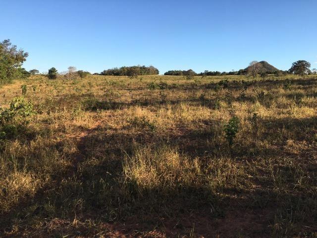 217 hectares, com 150 hectares aberto 32 km de Dom Aquino -MT - Foto 4