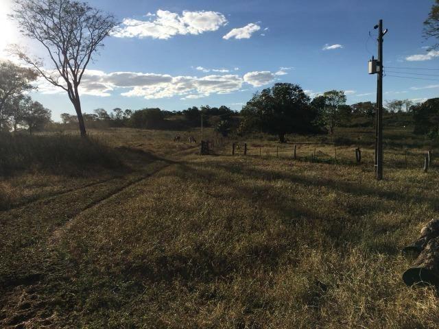 217 hectares, com 150 hectares aberto 32 km de Dom Aquino -MT - Foto 7