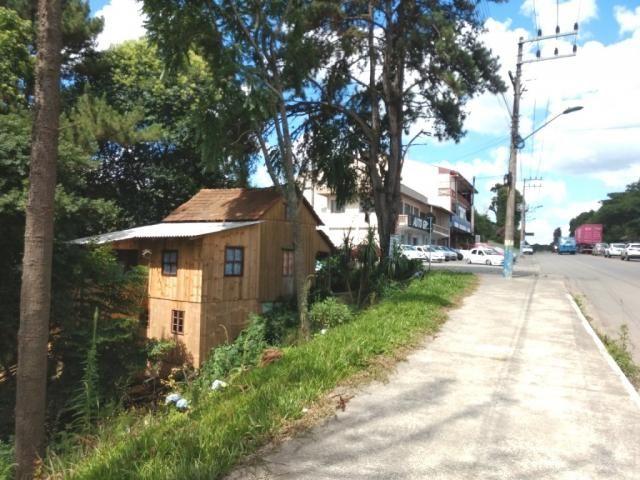 TERRENO COMERCIAL - BR 280 - RIO NEGRINHO SC - Foto 4