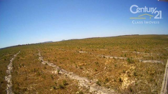 Fazenda rural à venda, zona rural, loreto.