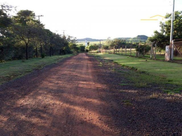 Chácara rural à venda, limoeiro, londrina. - Foto 12
