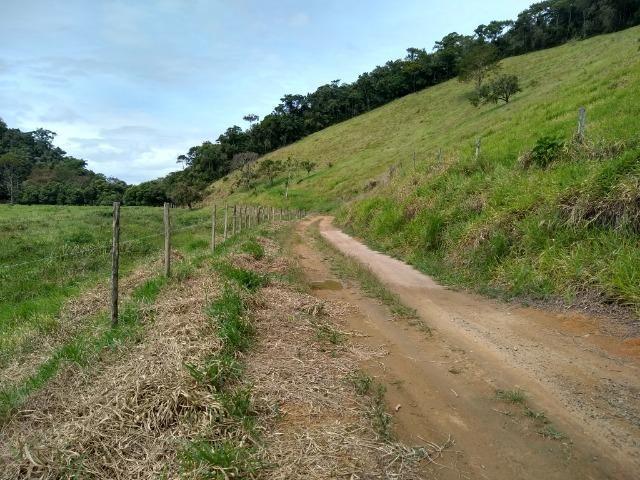 Sítio de 15 alqueires em Silva Jardim, RJ - Foto 13