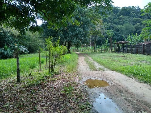 Sítio de 15 alqueires em Silva Jardim, RJ - Foto 7