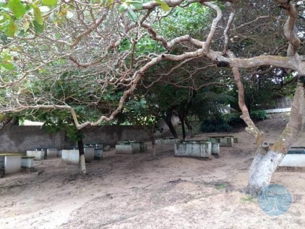 Terreno à venda em Lagoa do bonfim, Nísia floresta cod:10604 - Foto 13