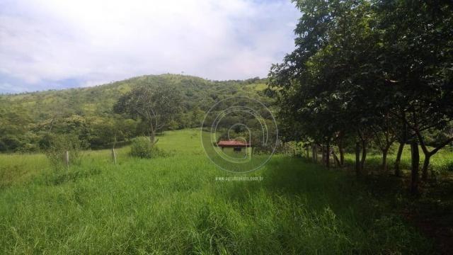 Sítio 20 ha região baú da guia mt - Foto 8