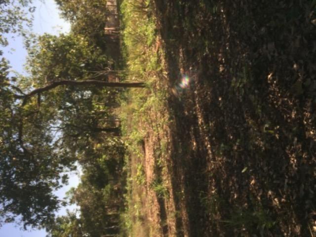 Chácara na estrada de Santo de Leverger.a 2 km da estrada - Foto 3