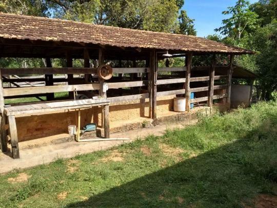 Sítio à venda com 3 dormitórios em Ribeirão do bagre, Felixlândia cod:672822 - Foto 6
