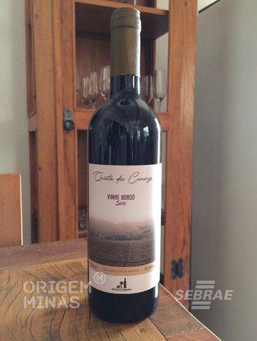 Vinho Tinto Bordô - 750 ml | Quinta dos Camargo Vinhos
