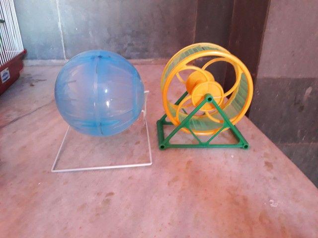 Kit Hamster Completo - Gaiola, brinquedos e mais! - Foto 2