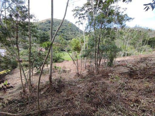 Terreno à venda em Vargem grande, Teresópolis cod:TE0036 - Foto 9