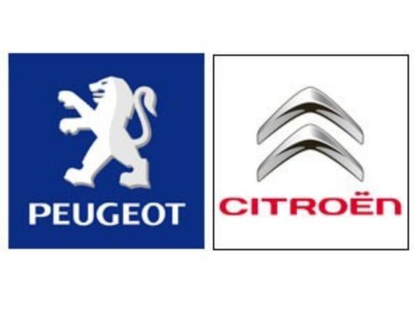 Manual De Proprietario Guia De Utilização Peugeot E Citroen