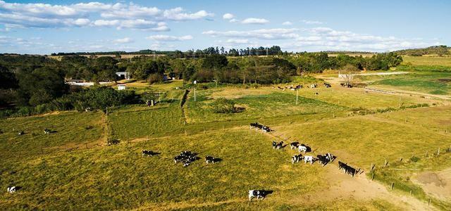 Fazenda (terreno) com 38 tarefas em Nossa Senhora Aparecida
