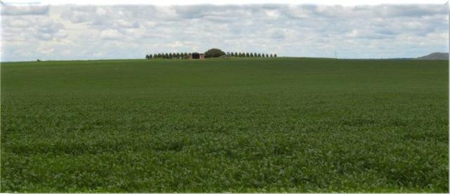 Fazenda 340 alqueites em Querencia no Norte-PR - Imperdível
