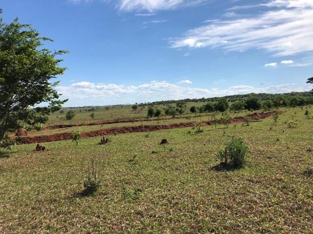 Fazenda com 515 hectares em Bataguassu toda formada em pastagem - Foto 2