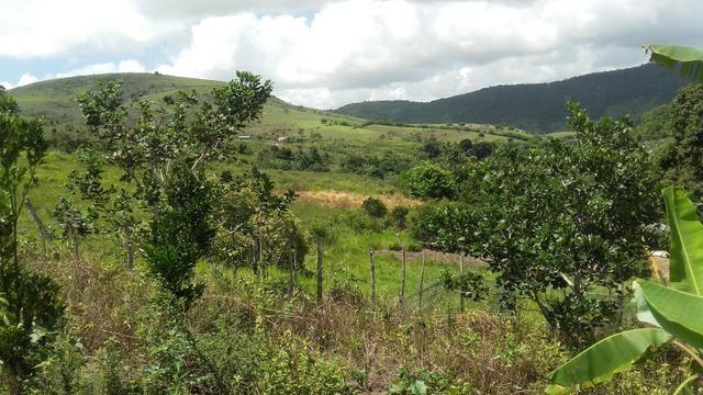 Sítio dos sonhos seu pedaço do Paraíso com 7 hectares por 150 mil - Foto 8