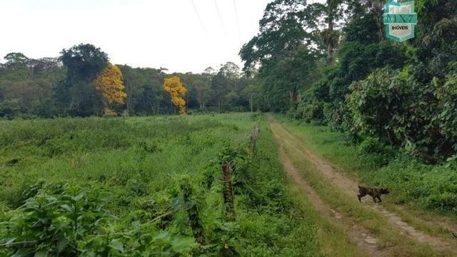 Barro Preto-BA. Fazenda de 167 Hectares. produção de cacau - Foto 12