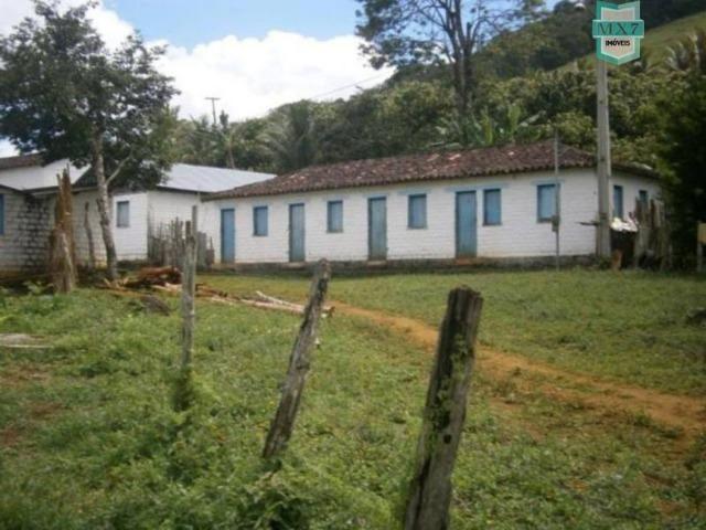 Fazenda de 278 hectares, entre Ubaitaba e Travessão - Foto 9