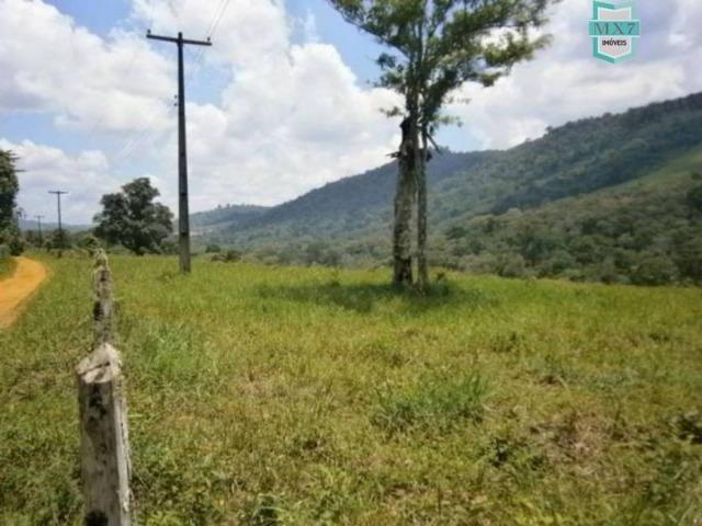 Fazenda de 278 hectares, entre Ubaitaba e Travessão - Foto 14