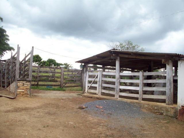 Cód. 5284 - Sítio em Cocalzinho de Goiás