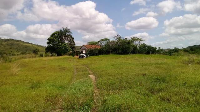 Propriedade de 7 hectares, escriturada, em Dois Leões-PE! - Foto 9