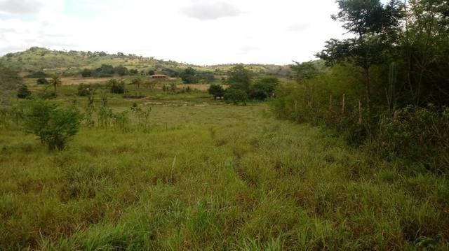 Propriedade de 7 hectares, escriturada, em Dois Leões-PE! - Foto 12