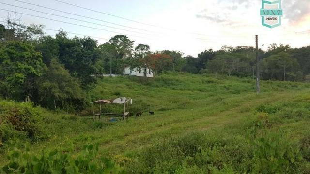 Barro Preto-BA. Fazenda de 167 Hectares. produção de cacau - Foto 10