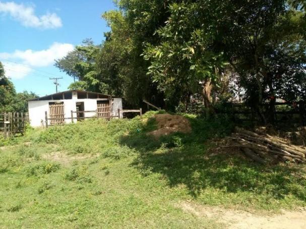 Fazenda para venda em paudalho, guadalajara - Foto 19
