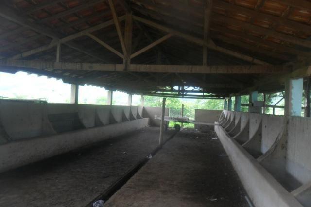 Fazenda 35 alqueires baixo guandu es - Foto 11