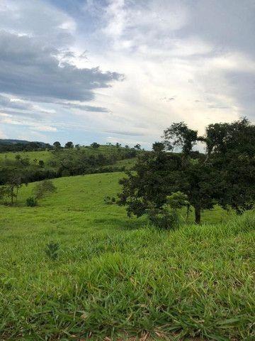 Crédito rural - Foto 3