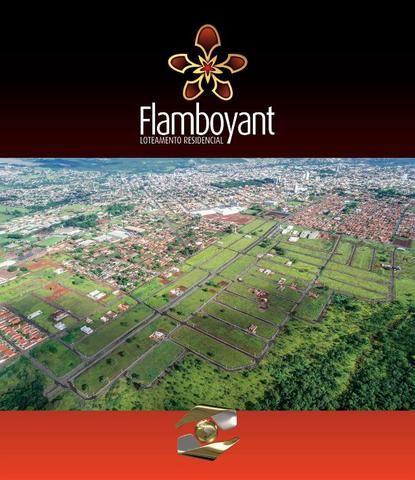 Carnielli Negócios Imobiliários-Excelência em Soluções Imobiliárias-Anápolis-Goiás-Brasil - Foto 15