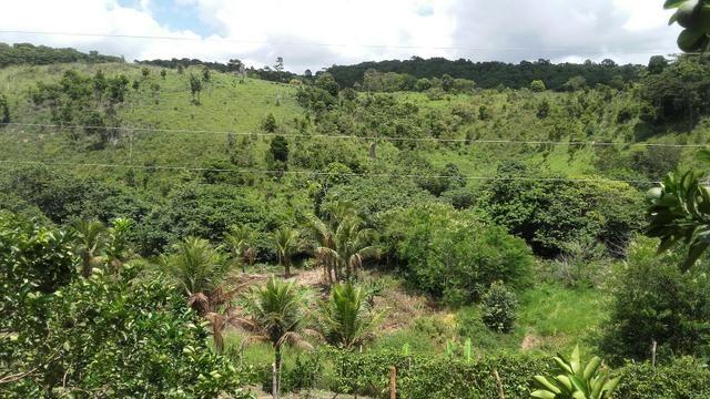 Sítio dos sonhos seu pedaço do Paraíso com 7 hectares por 150 mil - Foto 17