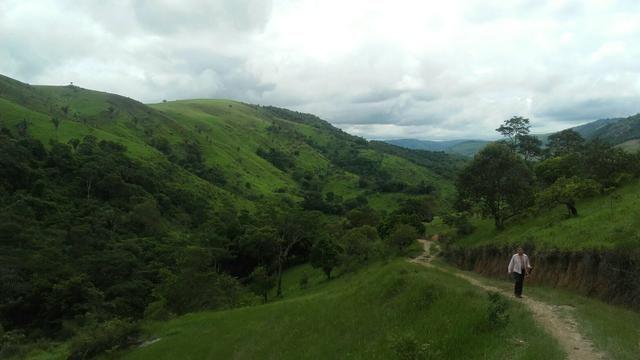 Linda Fazenda em Joaquim Gomes 60 hectares apenas 750 mil - Foto 3