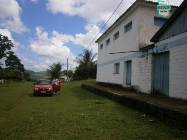 Fazenda de 278 hectares, entre Ubaitaba e Travessão - Foto 6