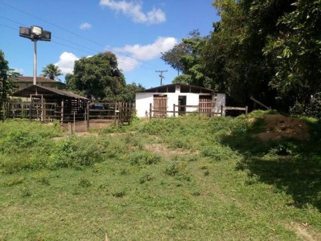 Fazenda para venda em paudalho, guadalajara - Foto 2