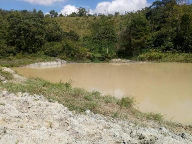 Fazenda para venda em paudalho, guadalajara - Foto 3