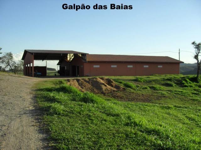 Fazenda com tudo (Casas, lagos, heliporto etc) - Foto 5