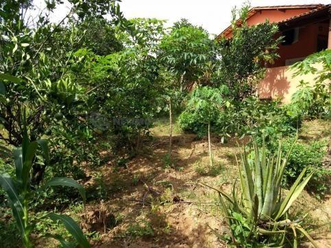 Sítio à venda com 3 dormitórios em Ribeirão do bagre, Felixlândia cod:672822 - Foto 12