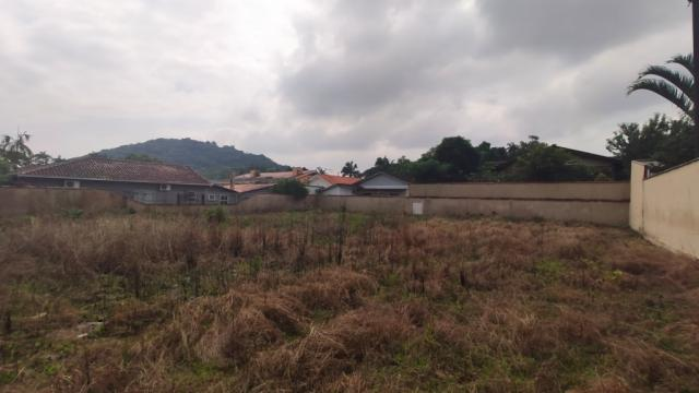 Terreno para alugar com 0 dormitórios em America, Joinville cod:08859.001 - Foto 3