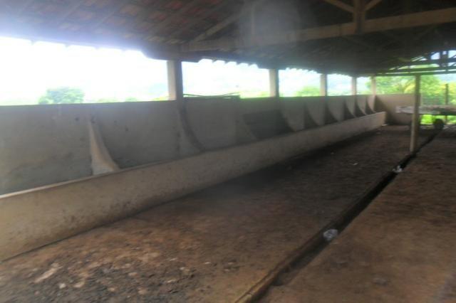 Fazenda 35 alqueires baixo guandu es - Foto 14