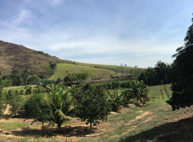 Terreno / Lote em Serra - Foto 3